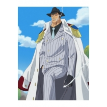 One Piece Kizaru Taisho Borsalino Cosplay Costume Free Shipping Custom Made for Halloween and Christmas