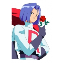 Pokemon Team Rocket James Cosplay Wig Free Shipping for Halloween and Christmas
