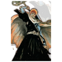 Free Shipping Bleach Kurosaki Ichigo Men's Execution Ground Cosplay Costume for Halloween and Christmas