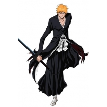 Free Shipping Bleach Ichigo Bankai Cosplay Costume for Halloween and Christmas