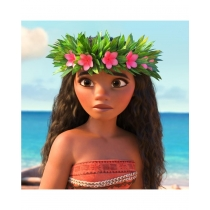 Moana Cosplay Wig Free Shipping for Halloween and Christmas