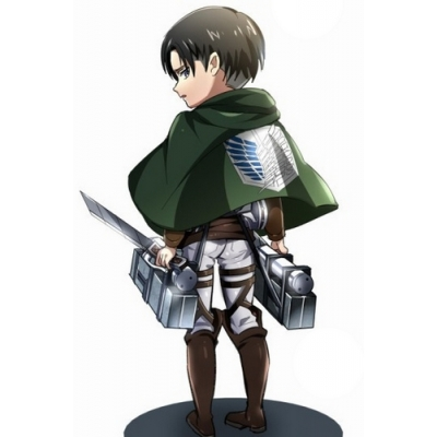 Free Shipping Shingeki no Kyojin Cosplay Costume for Halloween and Christmas