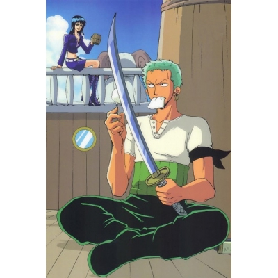 One Piece Roronoa Zoro Cosplay Costume Free Shipping for Halloween and Christmas
