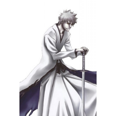 Free Shipping Bleach Ichigo Kurosaki Hollow Form Cosplay Costume for Halloween and Christmas