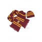 Gryffindor Cosplay Hat and Scarf from Harry Potter for Halloween and Christmas
