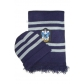 Ravenclaw House Cosplay Hat and Scarf from Harry Potter Free Shipping for Halloween and Christmas