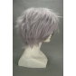 Final Fantasy XIII Hope Estheim Cosplay Wig Free Shipping for Halloween and Christmas