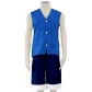 Monkey D. Luffy Blue Cosplay Costume from One Piece Free Shipping for Halloween and Christmas